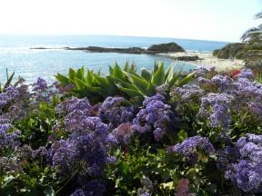 Laguna-Coast-DSCN4873