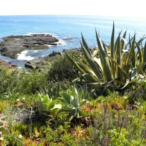 Laguna-Coast-DSCN4876