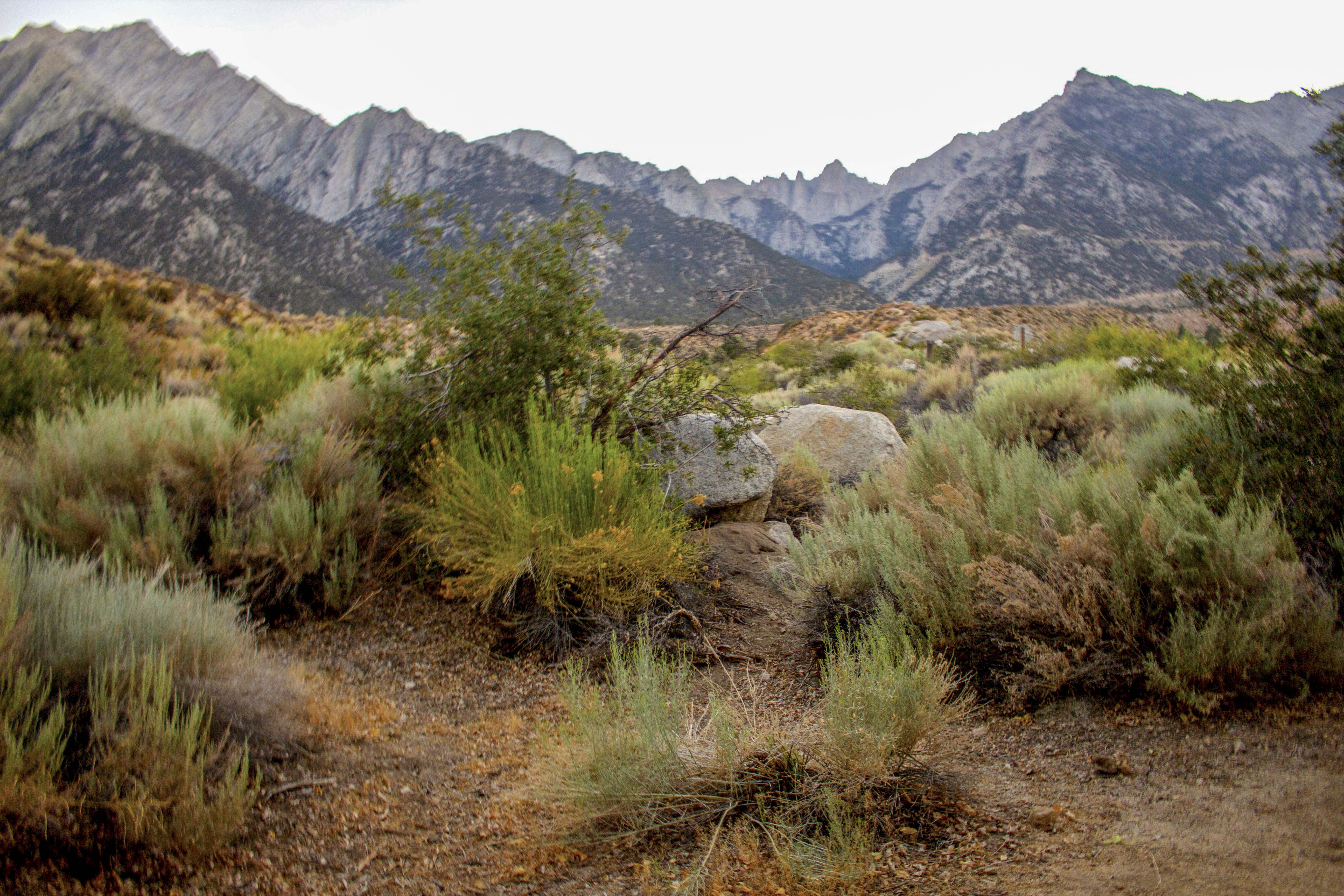 Lone Pine California - Photos by Luis P Camberos